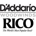 D'Addario RICO